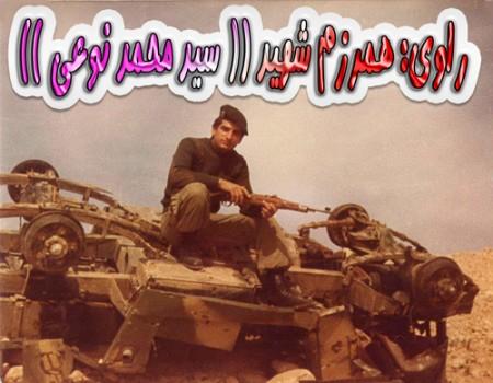 سید محمد نوعی