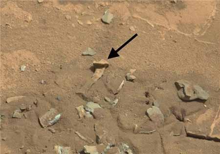 تصویر استخوان ران در مریخ + تصاویر