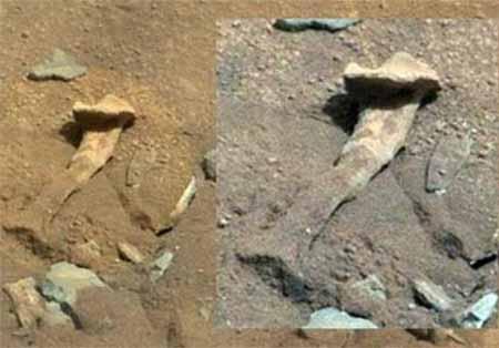 اخبار علمی و آموزشی - تصویر استخوان ران در مریخ+تصاویر