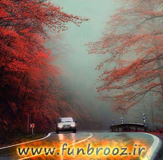 جاده جنگلی عباس اباد،غرب مازندران.....