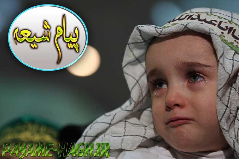 افتتاح سایت پیام شیعه | SHIA متفاوت ترین سایت مذهبی